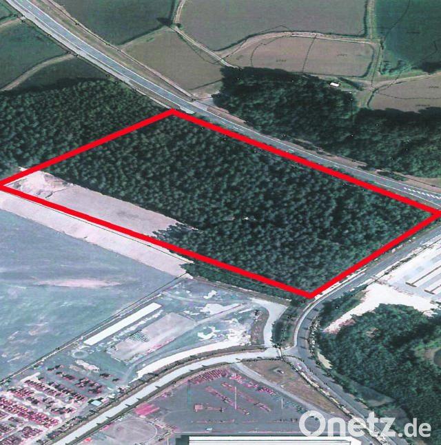 quadratmeter hektar