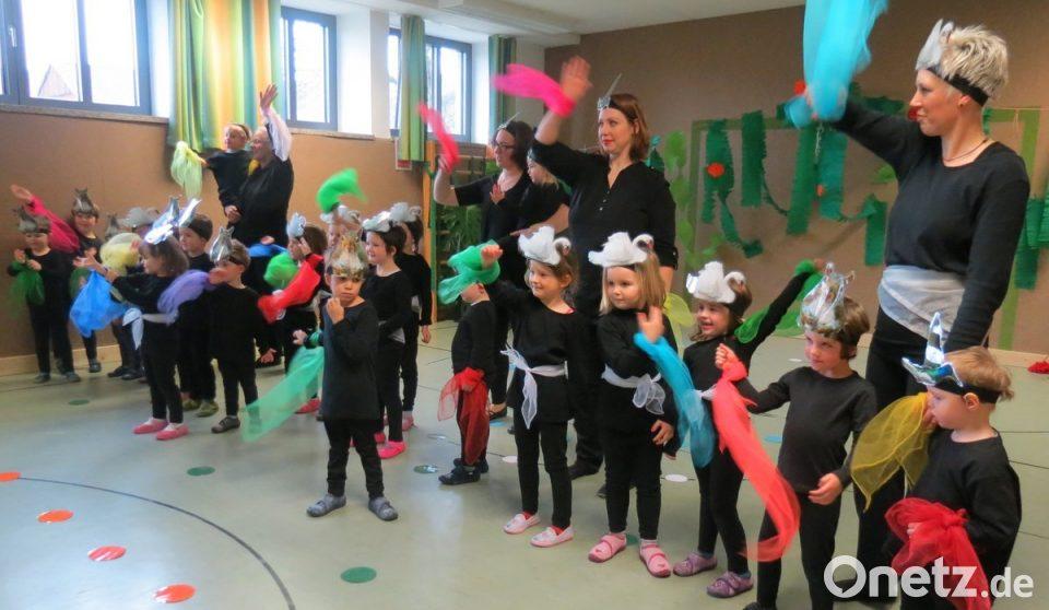 Urauffuhrung Fur Karneval Der Tiere Onetz