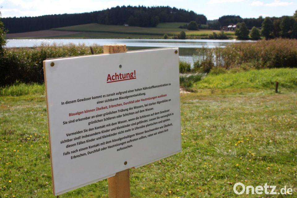 Landratsamt Warnt Vor Schleimig Grüner Gefahr Onetz