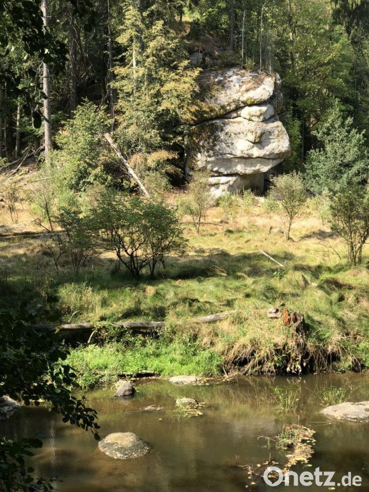 Vergessene Burg Im Waldnaabtal Onetz