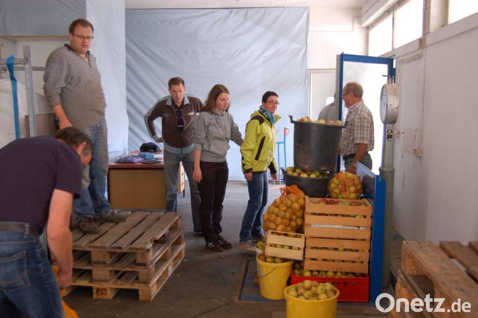 Klettergerüst Lagerhaus : Apfelsammlung in freudenberg onetz