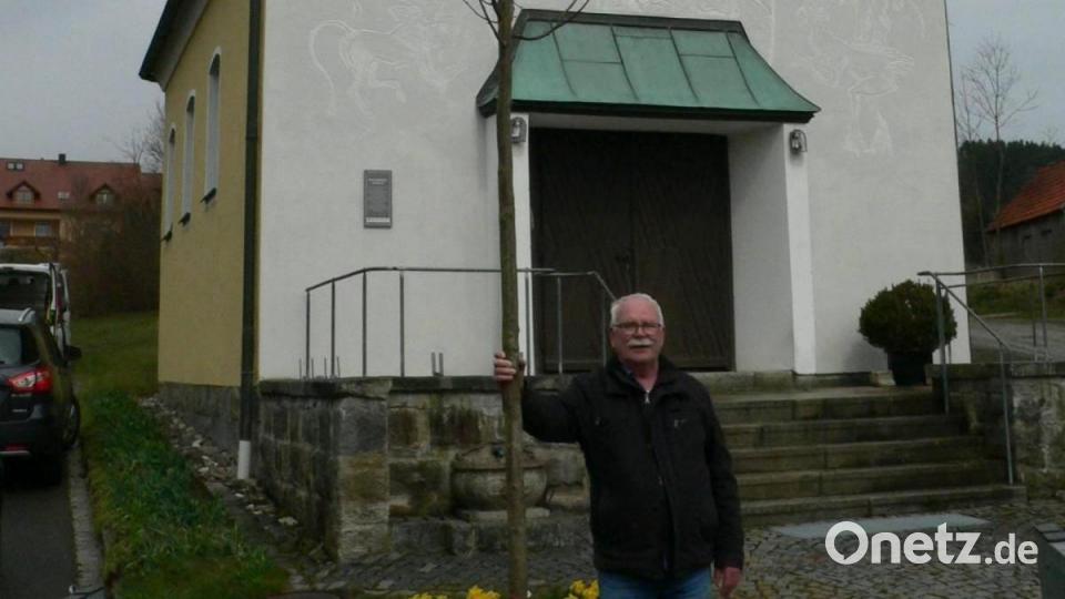 Neuer Baum vor der Bleichangerkapelle