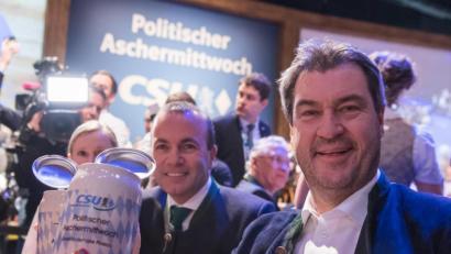 bayerwald fenster insolvent